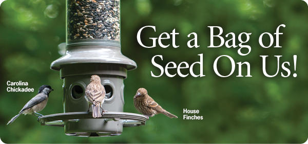 Get a Bag of Seed On Us!